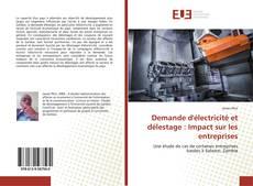 Bookcover of Demande d'électricité et délestage : Impact sur les entreprises