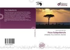 Обложка Ficus Subpuberula