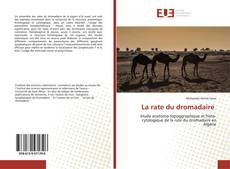 Bookcover of La rate du dromadaire