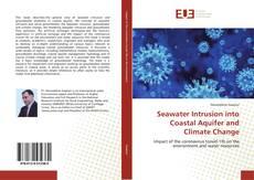 Copertina di Seawater Intrusion into Coastal Aquifer and Climate Change
