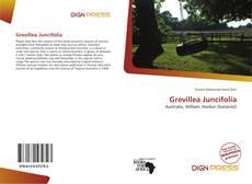 Bookcover of Grevillea Juncifolia
