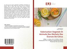 Borítókép a  Valorisation Vegetale Et Animale Des Déchets Des Écorces De Citrus - hoz