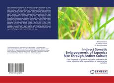 Bookcover of Indirect Somatic Embryogenesis of Japonica Rice Through Anther Culture