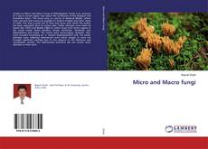 Bookcover of Micro and Macro fungi