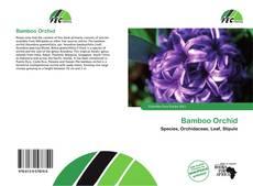 Capa do livro de Bamboo Orchid
