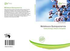 Melaleuca Quinquenervia的封面