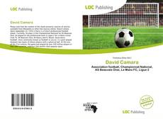 Bookcover of David Camara