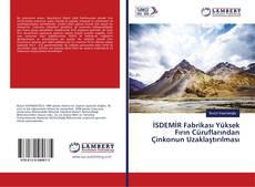 Bookcover of İSDEMİR Fabrikası Yüksek Fırın Cüruflarından Çinkonun Uzaklaştırılması