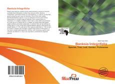 Capa do livro de Banksia Integrifolia