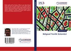 Bölgesel Yenilik Sistemleri kitap kapağı