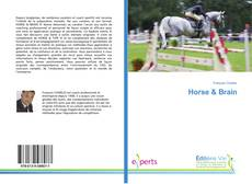 Bookcover of Horse & Brain
