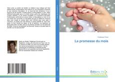 Bookcover of La promesse du mois