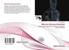 Copertina di Muscle Biceps Brachial
