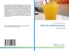 Buchcover von Élixir de santé Kambucha