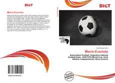 Bookcover of Mario Evaristo