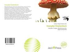 Inocybe Coelestium kitap kapağı