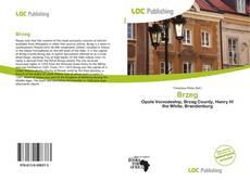 Bookcover of Brzeg