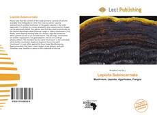Lepiota Subincarnata的封面