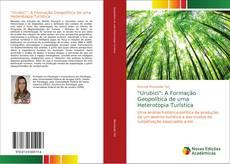 """Bookcover of """"Urubici"""": A Formação Geopolítica de uma Heterotopia Turística"""