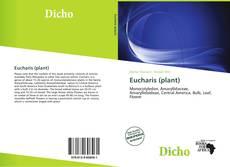 Обложка Eucharis (plant)