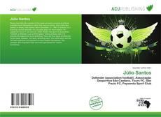 Bookcover of Júlio Santos