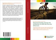 Capa do livro de Representações Sociais de Ambiente na APA do Pico da Ibituruna