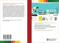Обложка Obtenção de açúcares fermentescíveis do bagaço de cana-de-açúcar