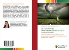 Capa do livro de Os sentimentos desencadeados em crianças por um tornado