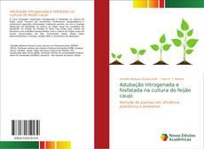 Buchcover von Adubação nitrogenada e fosfatada na cultura do feijão caupi