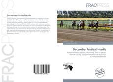 Bookcover of December Festival Hurdle