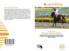Bookcover of Drinmore Novice Chase