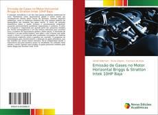 Capa do livro de Emissão de Gases no Motor Horizontal Briggs & Stratton Intek 10HP Baja