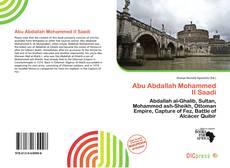 Abu Abdallah Mohammed II Saadi kitap kapağı