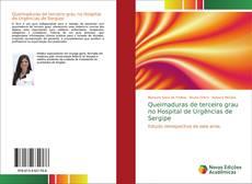 Bookcover of Queimaduras de terceiro grau no Hospital de Urgências de Sergipe