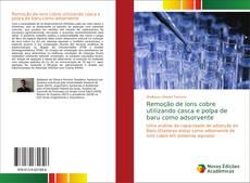 Capa do livro de Remoção de íons cobre utilizando casca e polpa de baru como adsorvente