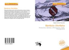 Buchcover von Banksia Ilicifolia