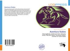 Bookcover of Aventura Stakes