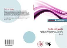 Capa do livro de Fuite en Égypte
