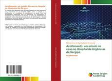 Обложка Acolhimento: um estudo de caso no Hospital de Urgências de Sergipe