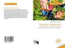 Bookcover of Clematis Pubescens