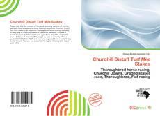 Copertina di Churchill Distaff Turf Mile Stakes