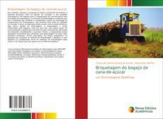 Capa do livro de Briquetagem do bagaço de cana-de-açúcar