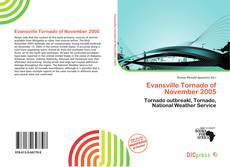 Bookcover of Evansville Tornado of November 2005