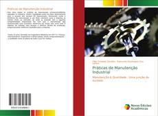 Borítókép a  Práticas de Manutenção Industrial - hoz