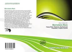 Bernstein-Rein的封面