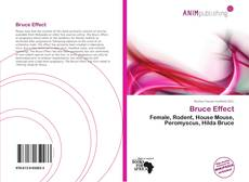 Bookcover of Bruce Effect