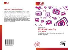 Buchcover von 1999 Salt Lake City tornado