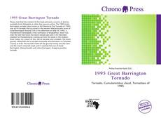Bookcover of 1995 Great Barrington Tornado