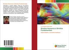 Direitos Humanos e Direitos Fundamentais kitap kapağı