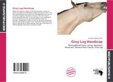Bookcover of Grey Lag Handicap